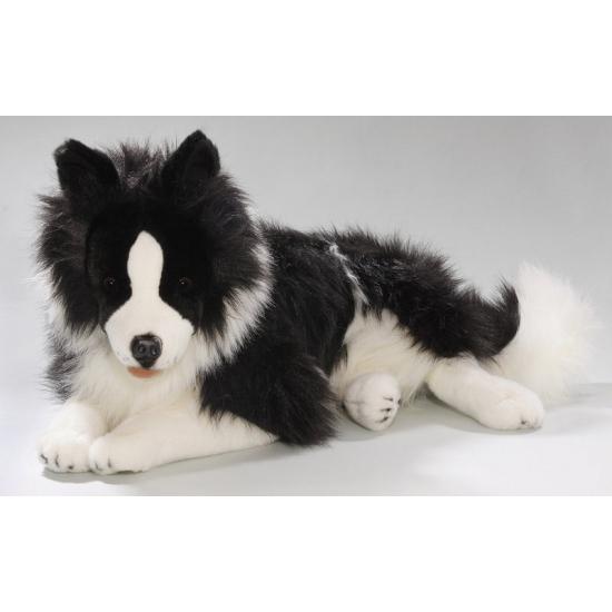 Knuffel Border Collie hond van 60 cm (bron: Sinterklaas-feestwinkel)