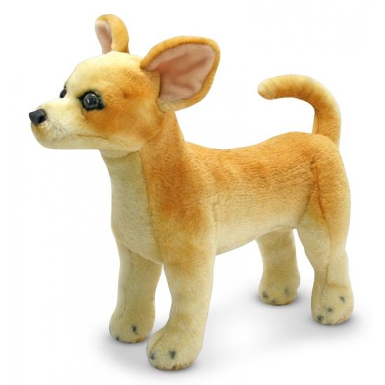 Knuffeldier Chihuahua hond 38 cm (bron: Sinterklaas-feestwinkel)