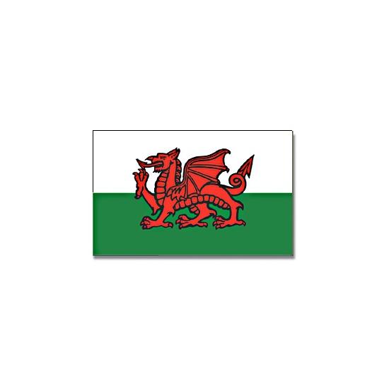 Vlag Wales 90 x 150 cm