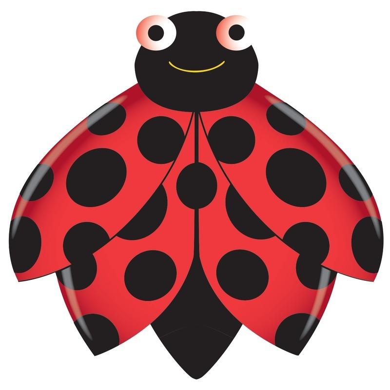 Lieveheersbeestje speel vlieger 76 x 112 cm