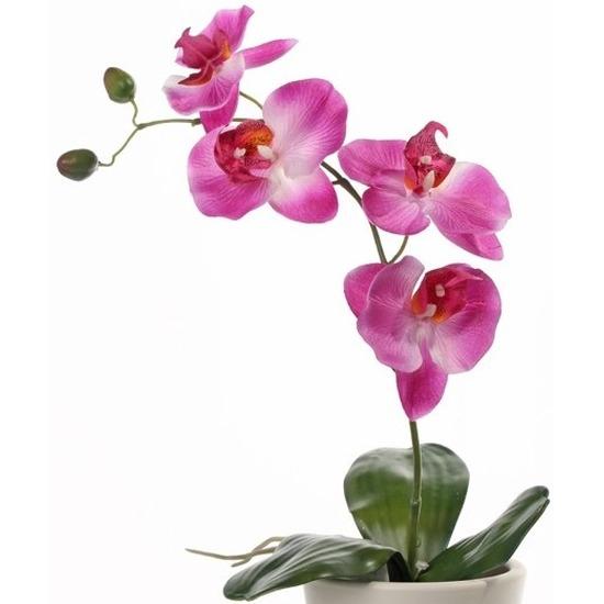 Orchidee kuntplant roze 44 cm