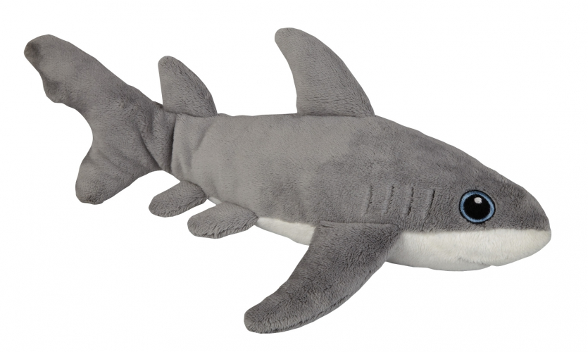 witte haai pup