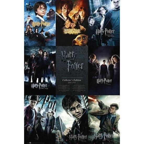 Harry Potter maxi poster 61 x 91 cm